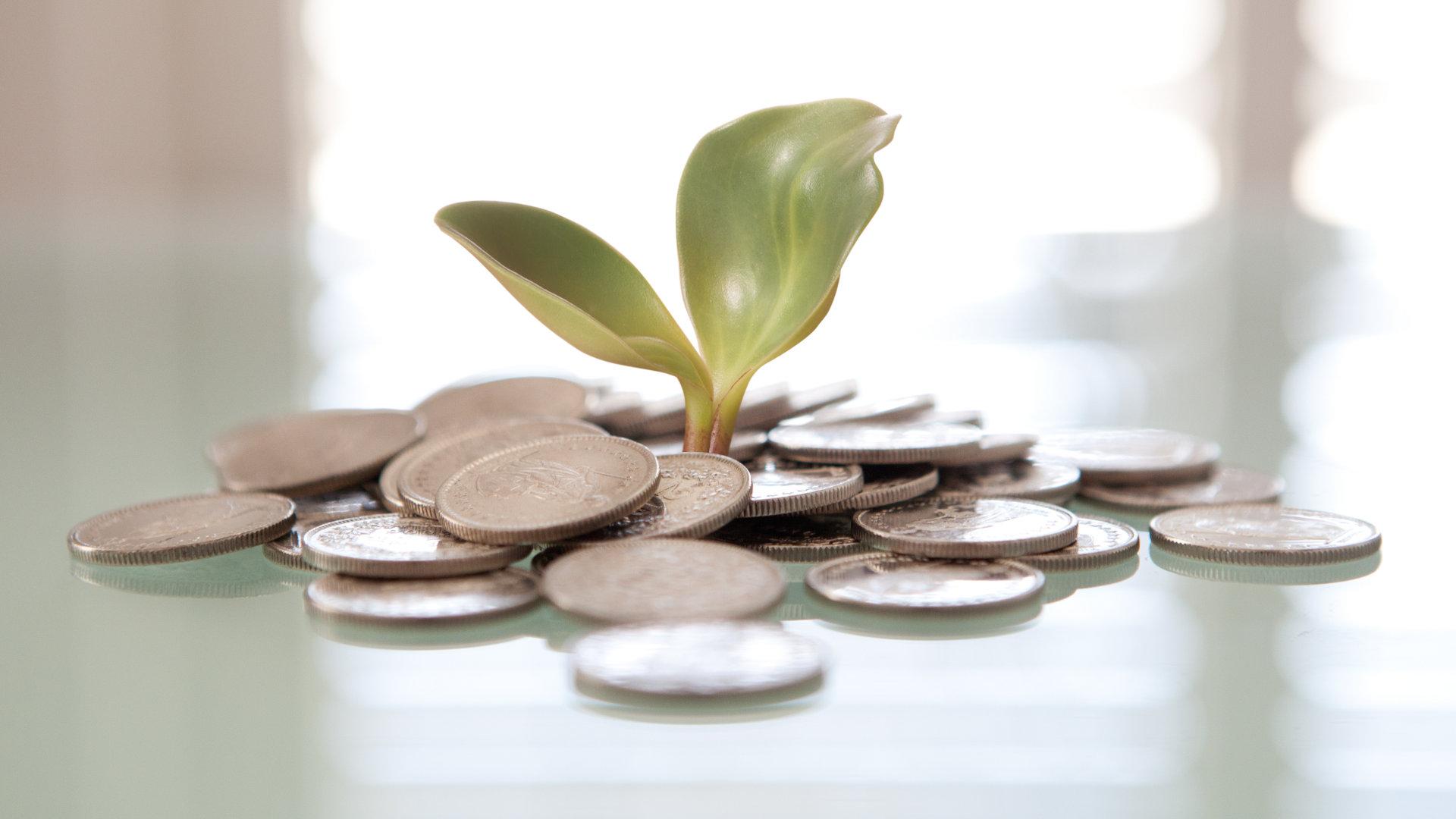 Tips til passiv inntekt